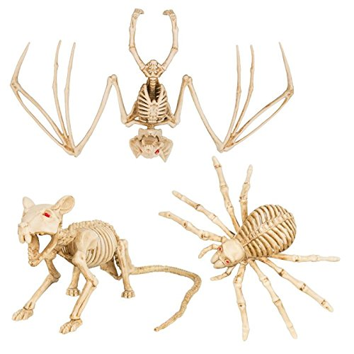 1?x Halloween Dekorations Animal Skelett Fledermaus, Ratte oder spider- Design zuf?llig