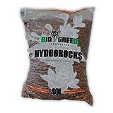 Billes d'argile / Arlite expansée BioGreen Hydrorocks (40L)...