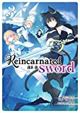 Reincarnated as a Sword (Light Novel) Vol. 3 (English Edition)