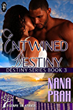 Entwined Destiny (Destiny African Romance series)