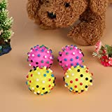 Foodie Puppies Chew Rubber Spike Squeaker Sound Ball Toy for Small to Medium Pets (Colour May Vary)