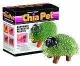 Chia Pet Grass Planter: Puppy