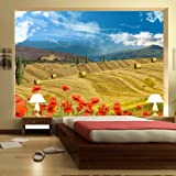 murando - Fototapete 250x175 cm - Vlies Tapete - Moderne Wanddeko - Design Tapete - Wandtapete - Wand Dekoration - Toskana 10110903-8