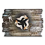 Kreative Feder Fische Designer Schlüsselbrett, Hakenleiste Landhaus Style, Shabby aus Holz 30x20cm, HSB016