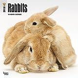 Rabbits 2018 Wall Calendar