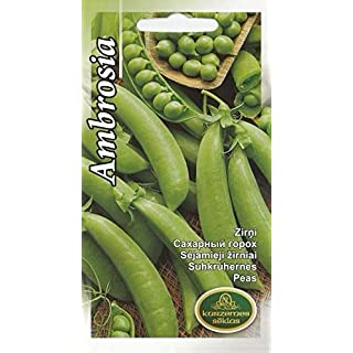 Portal Cool Vegetable Seeds Sugar Peas Pea Ambrosia EU Standard Pictorial Packet UK