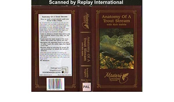 Anatomy Of A Trout Stream (Video Tape/PAL): Amazon.co.uk ...