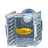 YaToy Self-Floating Sala parto il di pesci Serbatoio di Pesce Acrilico,Acquario per Pesci Allevamento Ittico Multiuso Acquario Serbatoio Incubatore per Serbatoio di Pesci