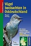 V?gel beobachten in Ostdeutschland