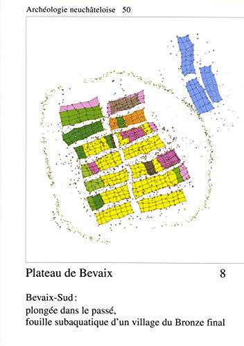 Plateau de Bevaix 8 Bevaix-Sud : plonge dans le pass, fouille subaquatique dun village du Bronze final