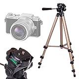 DURAGADGET Trépied Ajustable Solide pour Nikon D5600, Panasonic GF9 / Lumix DC-FZ82...