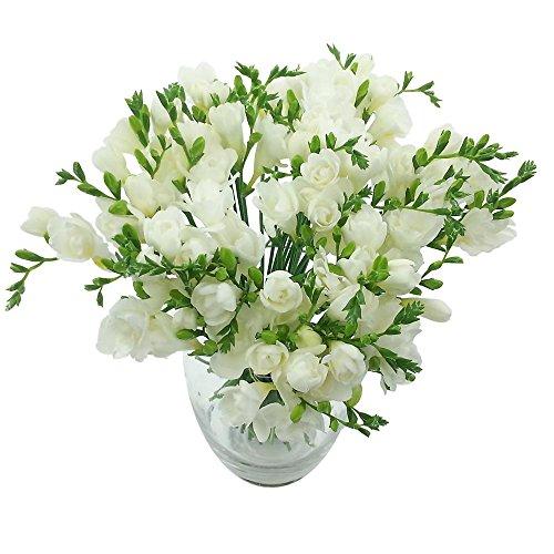clare-florist-whispers-freesia-bouquet-fresh-freesia-flowers-white-40-piece