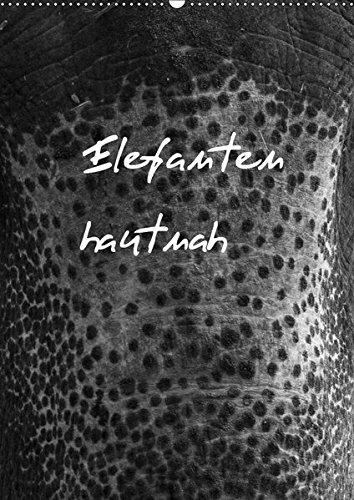 Elefanten hautnah (Wandkalender 2019 DIN A2 hoch): Elefanten hautnah ist eine Auswahl...