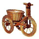 Deko-Dreirad, Pflanzschale, Dreirad aus Weide geflochten - 39 x 23 cm Hellbraun