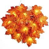 2 m 20 LED de otoño Artificial Arce Hojas de Alambre de Cuerda Luces...