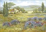 Artland Qualitätsbilder I Bild auf Leinwand Leinwandbilder Wandbilder 100 x 70 cm Landschaften Europa Frankreich Malerei Grün A1HP Provence Lavendelwiese