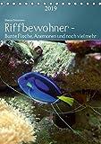 Riffbewohner - Bunte Fische, Anemonen und noch viel mehrAT-Version (Tischkalender 2019 DIN A5 hoch): Tropische Riffe bieten eine große Vielfalt an ... Farben (Planer, 14 Seiten ) (CALVENDO Tiere)