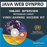 JAVA WEB DYNPRO Online Interview video learning SUCCESS KIT
