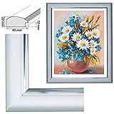 RAABEC Bilderrahmen, für Bilder der Größe 40x50cm, Farbe Silber, ideal für Malen nach Zahlen z.B. von Schipper oder Ravensburger, (Glas)