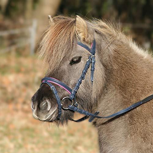 Waldhausen Trensenzaum Unicorn 2, Nachtblau/Azalee, Pony, Nachtblau/Azalee, Pony