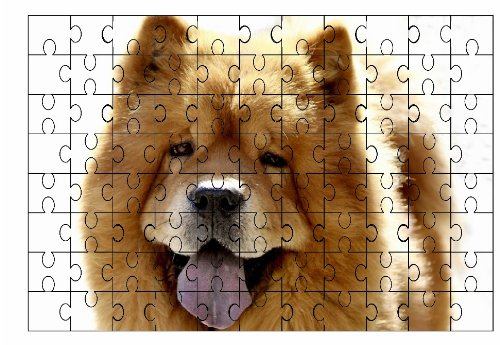 chow-chow-oro-cane-grande-puzzle-96-pezzi-72