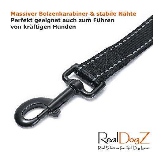 2m Hundeleine für grosse Hunde – Reflektierende Nylon Führleine - 6