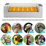Lorenlli Práctica 24 Huevos Incubadora de Gran Capacidad para Pollo Aves de Corral Codornices Huevos de Pavo Uso en el hogar Torneado automático de Huevos