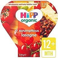 Hipp Organique Délicieux Lasagne 230G - Paquet de 4