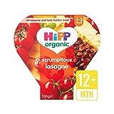 Hipp Bio Leckere Lasagne 230G - Packung mit 6