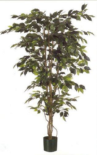 Ficus artificielle Original tronc en bois véritable et feuilles vertes naturelles