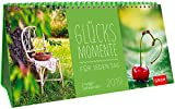 Glücksmomente für jeden Tag 2019: 3-teiliger Tischkalender mit Monatskalendarium