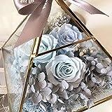 XHCP Fleur Immortelle 520 Cadeau Couvercle en Verre Lampe Cadeau Anniversaire Petite Amie, Bleu (boîte Cadeau)