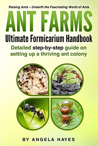 Ant Farms: Ultimate Formicarium Handbook (English Edition) (Ant Farm Queen)