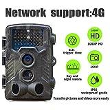 4G Cámara de Caza, Suntek 16MP 1080P HD Impermeable IP65 Trail Cámara con 3 PIR Sensor 120° IR Invisible Visión Nocturna 800LTE