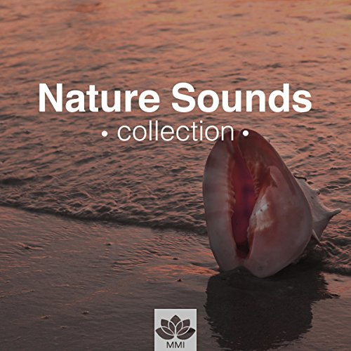 Nature Sounds Collection - Relaxation & Meditation Music for Sleep, Relax, Study, Find Peace