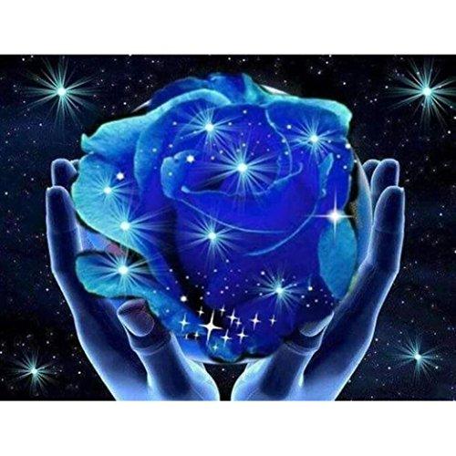 Riou DIY 5D Diamant Painting voll,Stickerei Malerei Diamant Schön Rose Blume Bild Muster Crystal Strass Stickerei Bilder Kunst Handwerk für Home Wall Decor gemälde Kreuzstich (Mehrfarbig B, 20X25cm) -