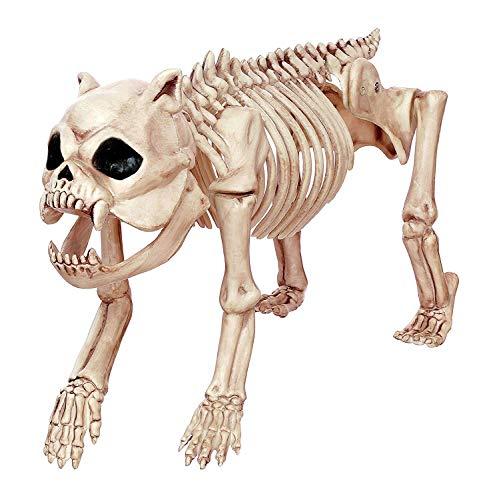 (Tierische Skelett Hund Schädel Dekoration Horror-Dekoration Mit Heimgesuchten Haus Stützen Halloween Schädel Tiere)