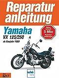 Yamaha XV 125/250 S (ab 1989) (Reparaturanleitungen)