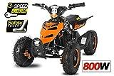 "Eco Repti 6"" 800W Quad Fusspedal + 3-Stufen Regulierer ATV Bike Pocket Kinderfahrzeug Elektrofahrzeug Elektro (Orange)"