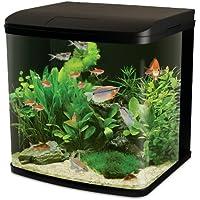 Interpet LED Lighting River Reef Glass Aquarium Fish Tank - 94 Litre