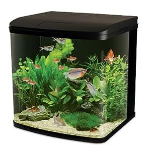 Interpet led lighting river reef glass aquarium fish tank for Amazon aquarium fish