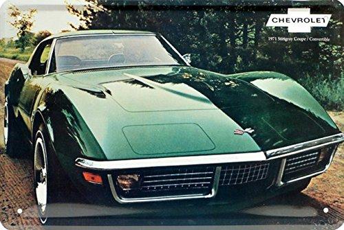 chevrolet-corvette-stingrey-coupe-1971-targa-in-metallo-20-x-30-retro-lamiera-89