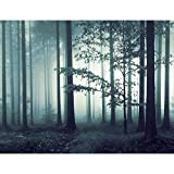 Fototapeten Wald Nebel 352 x 250 cm - Vlies Wand Tapete Wohnzimmer Schlafzimmer Büro Flur Dekoration Wandbilder XXL Moderne Wanddeko - 100% MADE IN GERMANY - 9291011b
