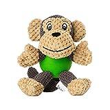 Raffaelo Hundespielzeug Hund Plüschspielzeug | Interaktives Spielzeug für Hunde | Quietschspielzeug für Hunde | Kauspielzeug für Welpen, Kleine und Mittelgroße Hunde