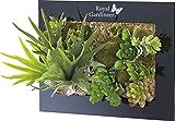 Tableau végétal avec plantes artificielles - 31 x 25 cm