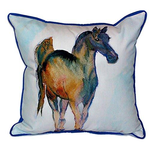 ercolor Pferd Extra Groß 20x 24Indoor/Outdoor Kissen (Colts-dekor)