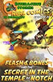 Flash and Bones and the Secret in the Temple of Notch: The Greatest Minecraft Comics for Kids