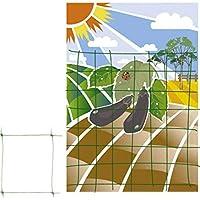 Mallas para control de plagas y protección de plantas | Amazon.es