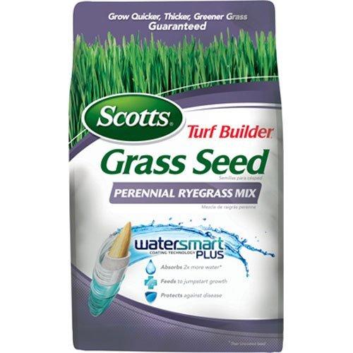 scotts-lawns-turf-builder-perennial-ryegrass-grass-seed-mix-3-lbs
