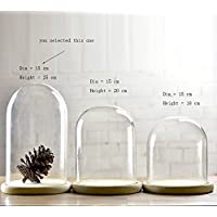Glass Cloche Bell Jar Dome With wooden Tray Diameter 15 cm